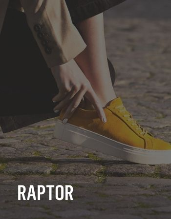 IMPACT er Raptor Gold Partner